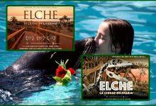 Elche: Un verano en familia en un destino de película