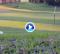 ¡Menuda precisión! Dos bolas, un agujero: los trick Shots tampoco paran en verano (VÍDEO)