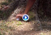 Nuevas Reglas de Golf (4): Reponer la bola cuando no se conoce el punto de reposo original (VÍDEO)