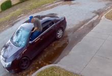 Un hombre es pillado 'in fraganti' robando una bolsa de palos y la policía ridiculiza su estrategia