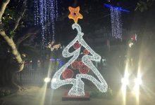 La Dipu de Alicante celebra la Navidad con un sinfín de propuestas para disfrutar estos días en familia