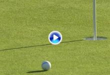 Rose se despidió de Torrey Pines con una obra maestra en forma de approach en el 18 (VÍDEO)