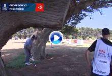 ¿Golpe del día? Ogilvy dejó la bola dada con este golpe mágico desde debajo de los árboles (VÍDEO)