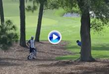 Sergio se sacó un par de la chistera tras golpear la rama de un árbol en su segundo golpe (VÍDEO)