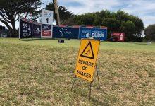 El que avisa no es traidor: Los jugadores/as del Vic Open deberán tener cuidado con las… ¡serpientes!