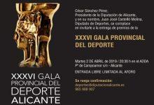Elige al Mejor Deportista de la Provincia de Alicante