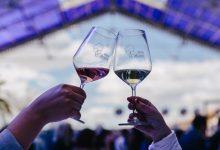 El Hotel Meliá de Alicante acoge el IV Salón Profesional Vinos Alicante DOP. Será el próximo 25 de marzo