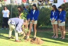 Un árbol plantado por el equipo asturiano en el Autonómico Fem., homenajea a Celia Barquín