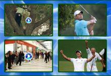 10 años de Información (2013/2): García desde el árbol, Tiger nº1, Flash Mob de Golf y Scott de verde