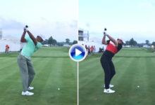 ¿Con cúal se queda? Vea y compare el swing de Tiger Woods frente al de Rory McIlroy en éste vídeo