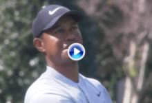 ¡Tiger va muy en serio! Disfruten de este excelente golpe de Woods con el que logró el primer birdie