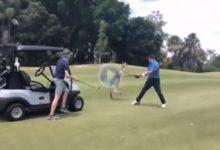 Cuando estás jugando un tranquilo partido de golf y de pronto sufres el duro ataque de un canguro