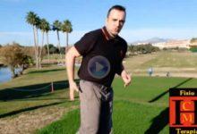 Habla nuestro Fisio: Las caderas, una estructura de gran importancia estabilizadoras del movimiento