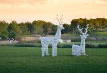 Las Colinas Golf & Country Club o como disfrutar de una Navidad inolvidable en el Mejor Desarrollo Residencial de España