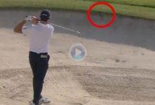 El Golf es duro… Adri Arnaus no pudo tener peor suerte. Al fallar el golpe, la bola quedó empotrada