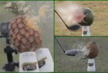Esto es lo que le ocurre a una fruta tropical cuando un «Pro» del PGA Tour estrella su bola con el driver