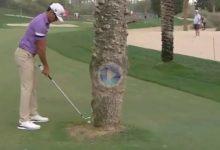Rafa Cabrera se sacó de la manga este increíble golpe con la bola pegada a una palmera en Dubai