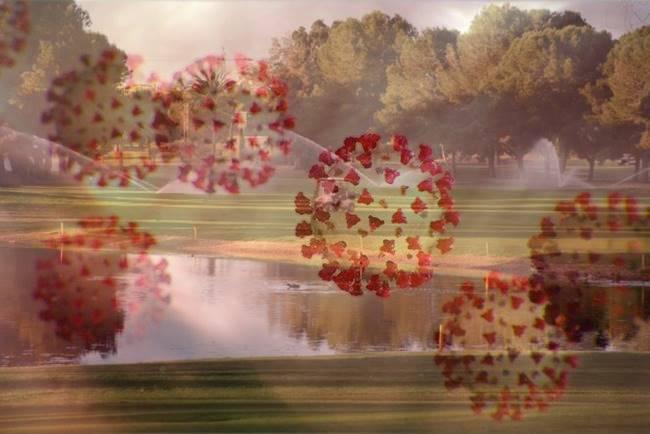 Coronavirus campo de golf