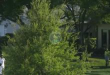 Danny Lee obró el milagro en el hoyo 12 tras este approach ciego desde detrás de un gran árbol