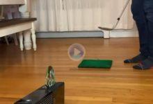 ¿Y esto? Un jugador introduce el juego (CD) en la videoconsola con un disparo certero hacia el lector