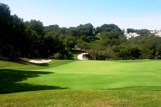 Fotos apertura campos de golf Orihuela (2) (002)