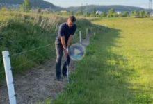 Reglas: ¿Podemos aliviarnos cuando la valla o cerca que delimita el fuera de límites impide el swing?