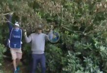 Harrington y su caddie se echaron al hombro un árbol en el Irish Open que le impedía dar su golpe