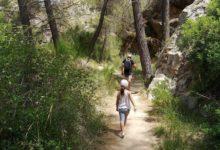 La Diputación de Alicante retoma su programa de senderismo con una ruta por Torremanzanas