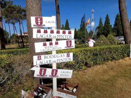 El campo de Golf Meis acogió la «IV Seman de ouro do Albariño». El evento convocó a casi 600 golfistas