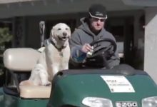 Conozcan a Grace, la perra labradora que velará porque todo transcurra con normalidad en el RSM