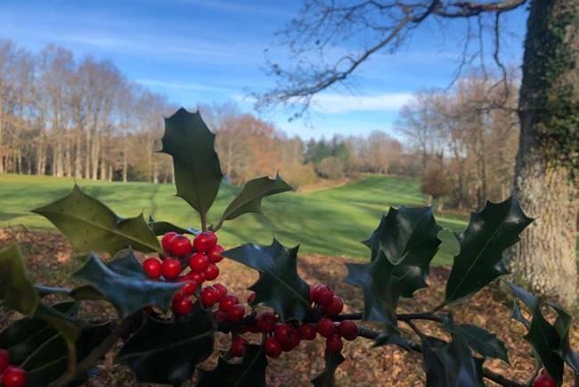 Izki Golf te propone esta Navidad jugar al mejor precio y una experiencia inolvidable para las PYMES