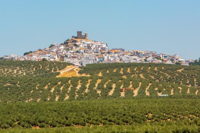 ¡Feliz Día de Andalucía! Sentimiento, historia y un recuerdo imborrable de todo un legado cultural