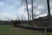 El Shoal Creek, víctima de las tormentas que han tenido lugar esta semana en el sur de EE.UU.