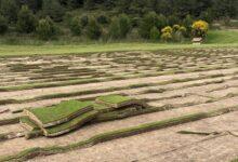 Comienza la reforma agronómica del recorrido Mestral de La Sella Golf diseño de Txema Olazábal