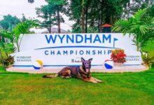 El Wyndham, última oportunidad para mantener la tarjeta PGA y meterse en los PlayOff de la FedEx